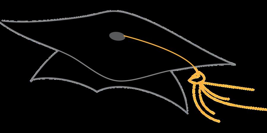 Senior Scholarship Opportunities