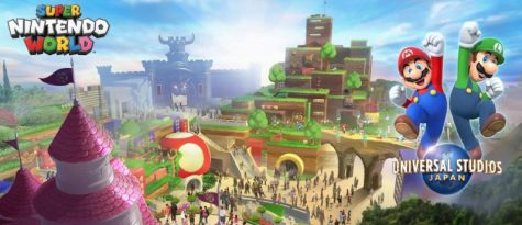 Theme Park Madness